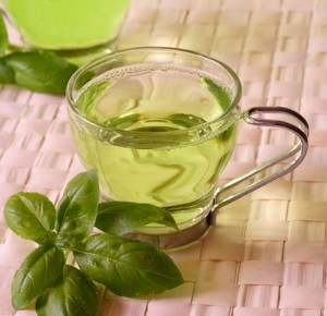 The Evergreen Green Tea …………..